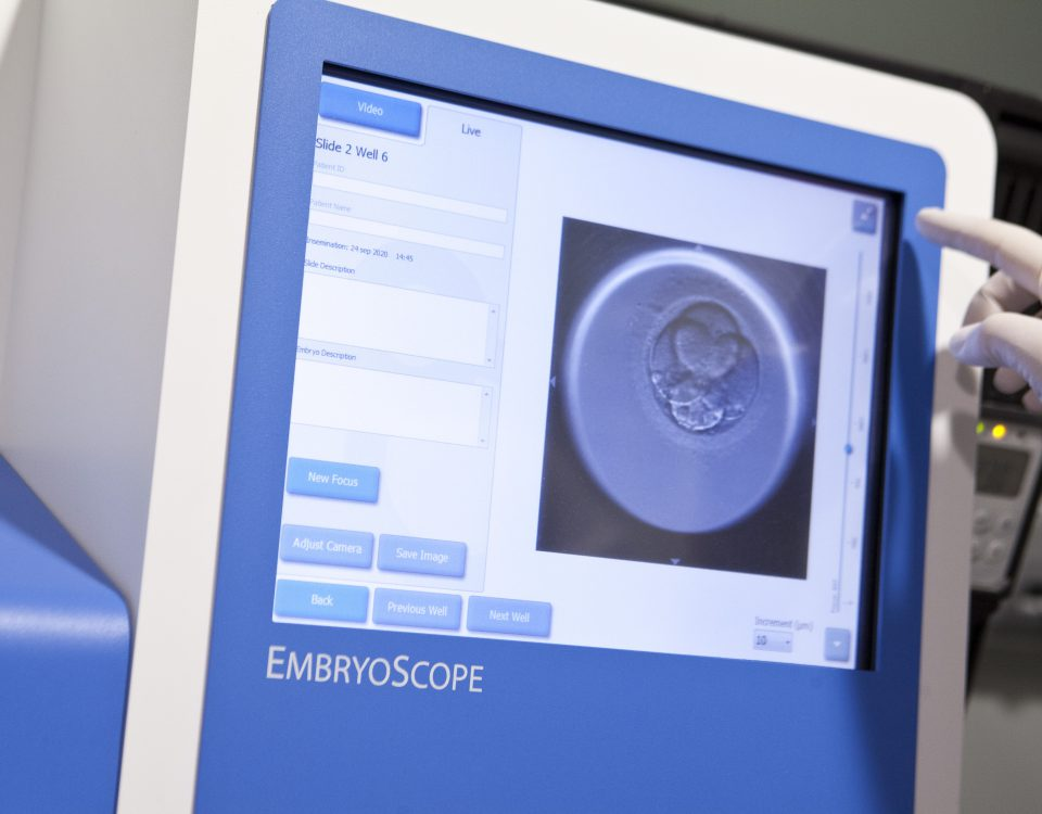 embryolab embryoscope